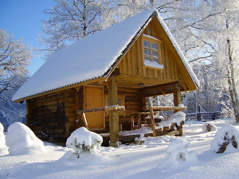 Tammiku-talv-029